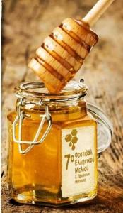 7o festival honey