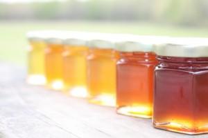 Karpenissi honey