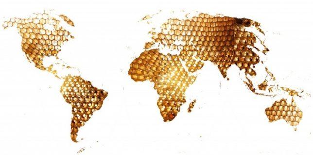 world-of-honey-c